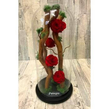 Four red forever rose on preserved tree in glass