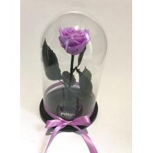 Purple forever rose glass