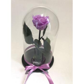 Purple forever rose glass