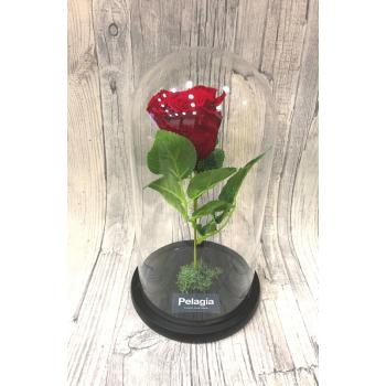 Red forever rose glass
