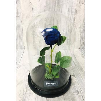 Blue forever rose glass