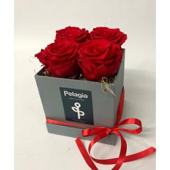 Forever Rose red in a box 4 pieces