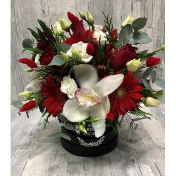 Red-white arrangement in round pot